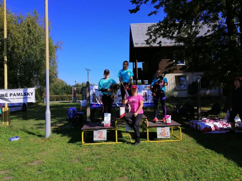 Úspěchy mládeže v závodu agility